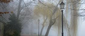 Die Demenz legt sich wie Nebelschwaden über die Erinnerung.